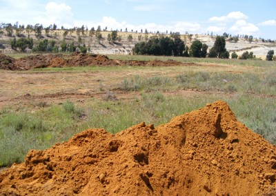 Mogali Gold Mining