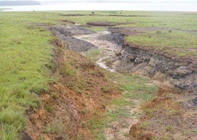 Witbank Erosion